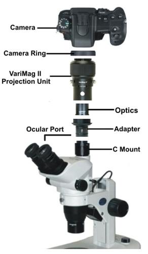 vmag2-diagram.jpg
